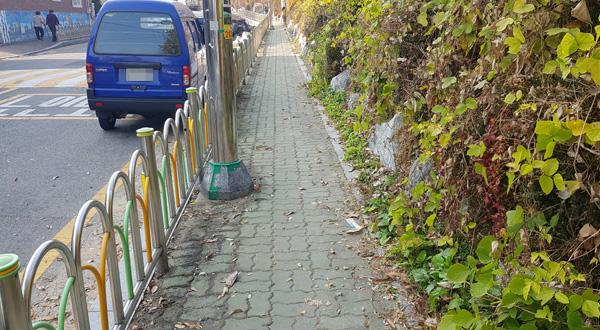 수원시 영통구 매화초등학교 보행로가 좁아 보행자들이 불편을 겪고 있다.  홍승남 기자 nam1432@kihoilbo.co.kr